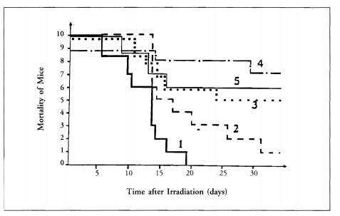 Fig. 8- El tasa de mortalidad de los ratones después de la irradiación de rayos Gamma de 900 rad bajo control y bajo el efecto preventivo de bio-PK: (I) control; (2) operador N.G.Balashov; (3) O.G.Borisoglcbskaya; (4) M.B.Fatkin (a larga distancia); (5) N.l. Pokazcycv.